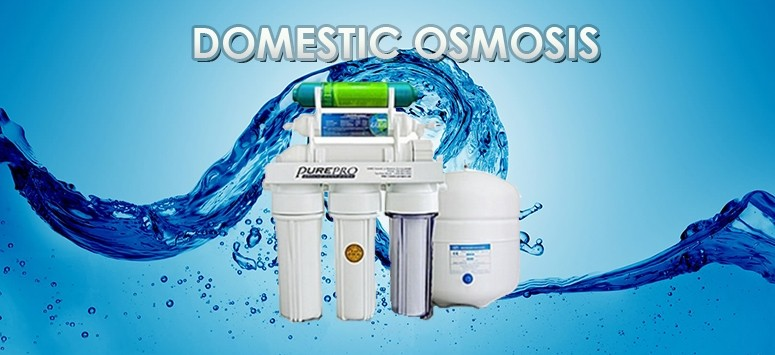 Domestic Omosis